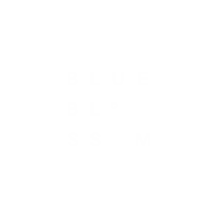 BLUE BLOSSOM CLOTHING STORE