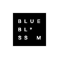 BLUE BLOSSOM CLOTHING STORE